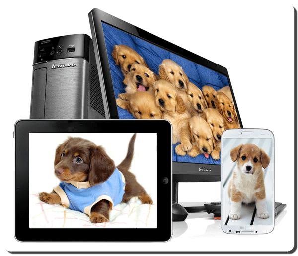 Adobe Dreamweaver CC Video Tutorials